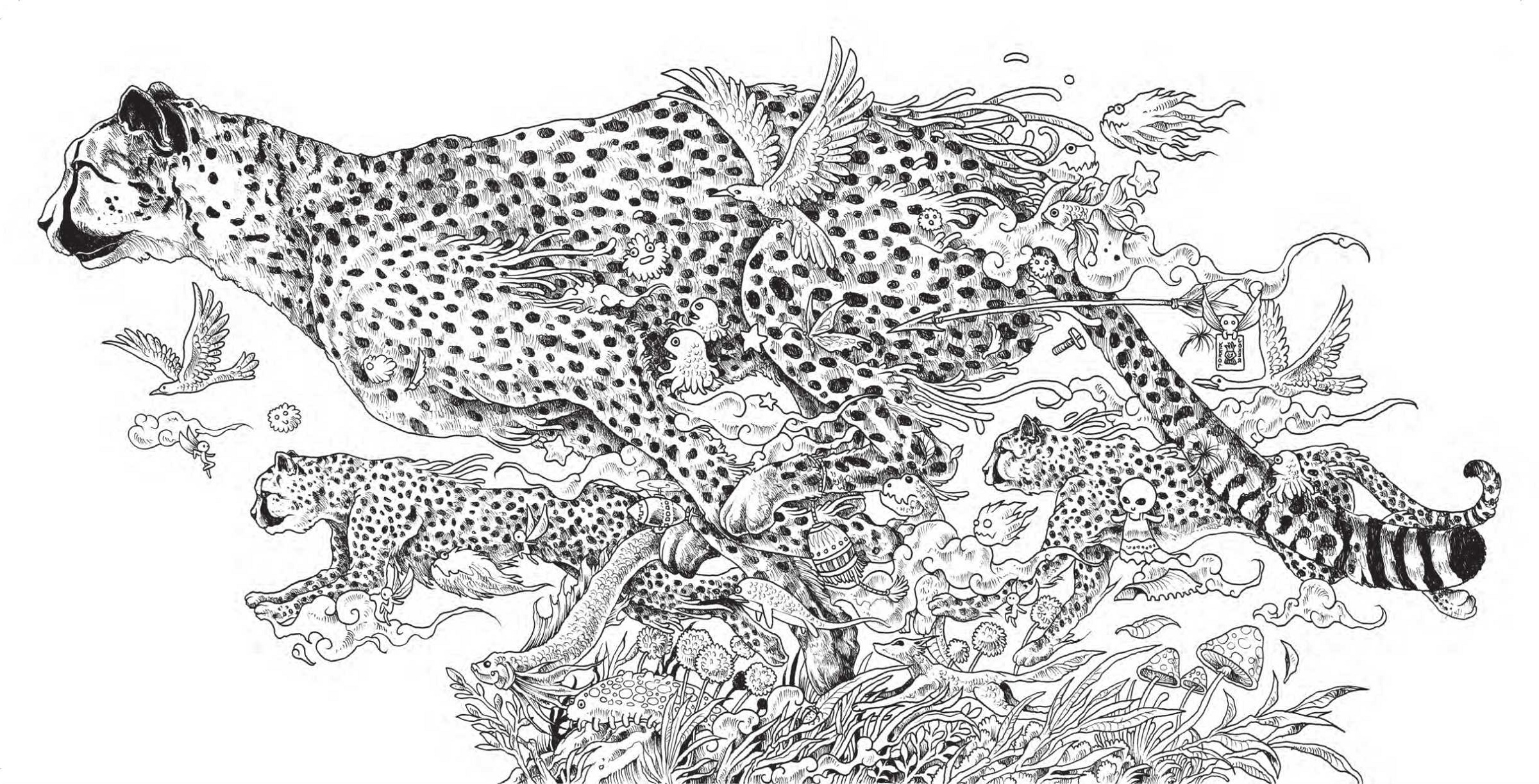 Animal Coloring Books For Adults Cheetah