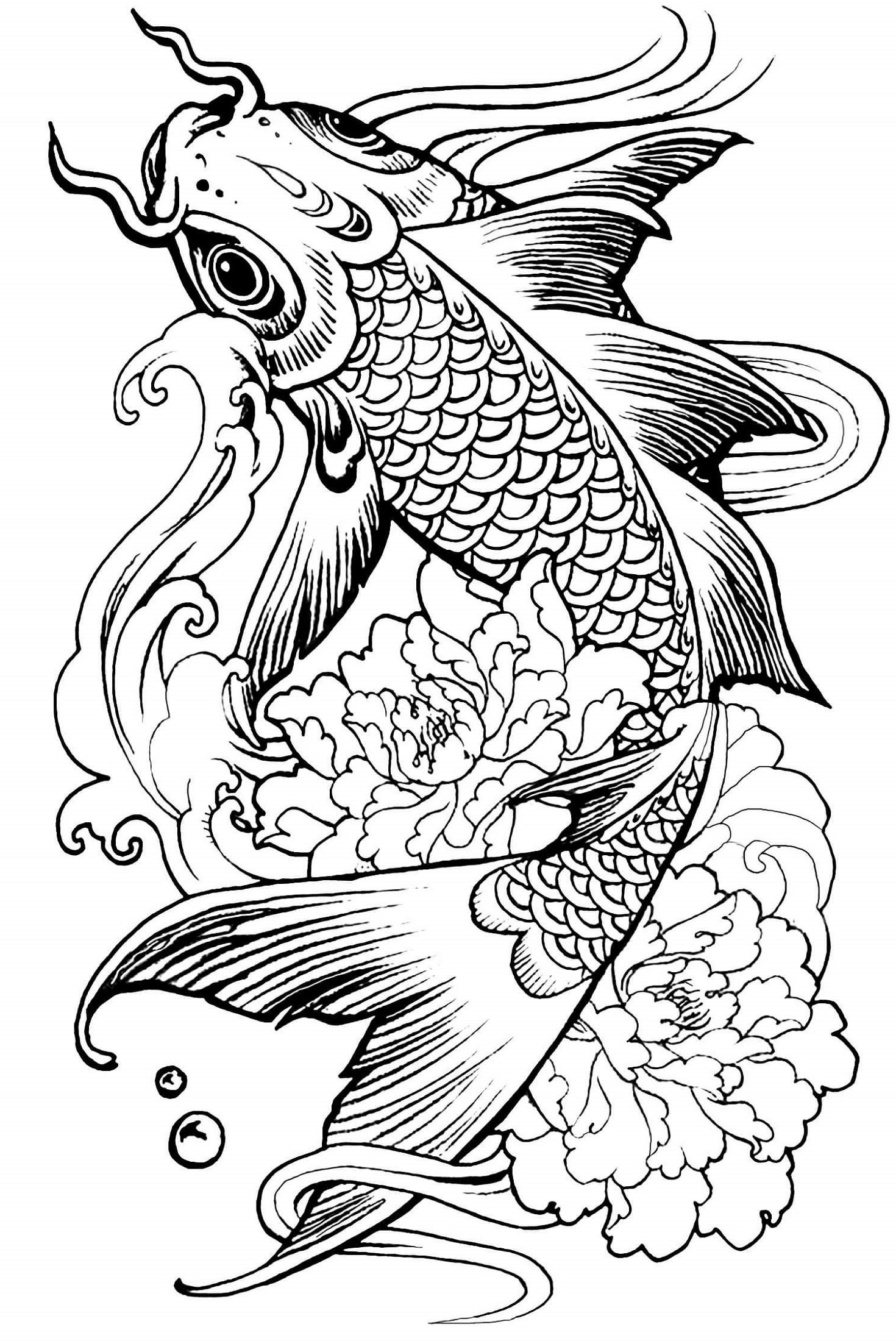 Animal Coloring Books For Adults Fish