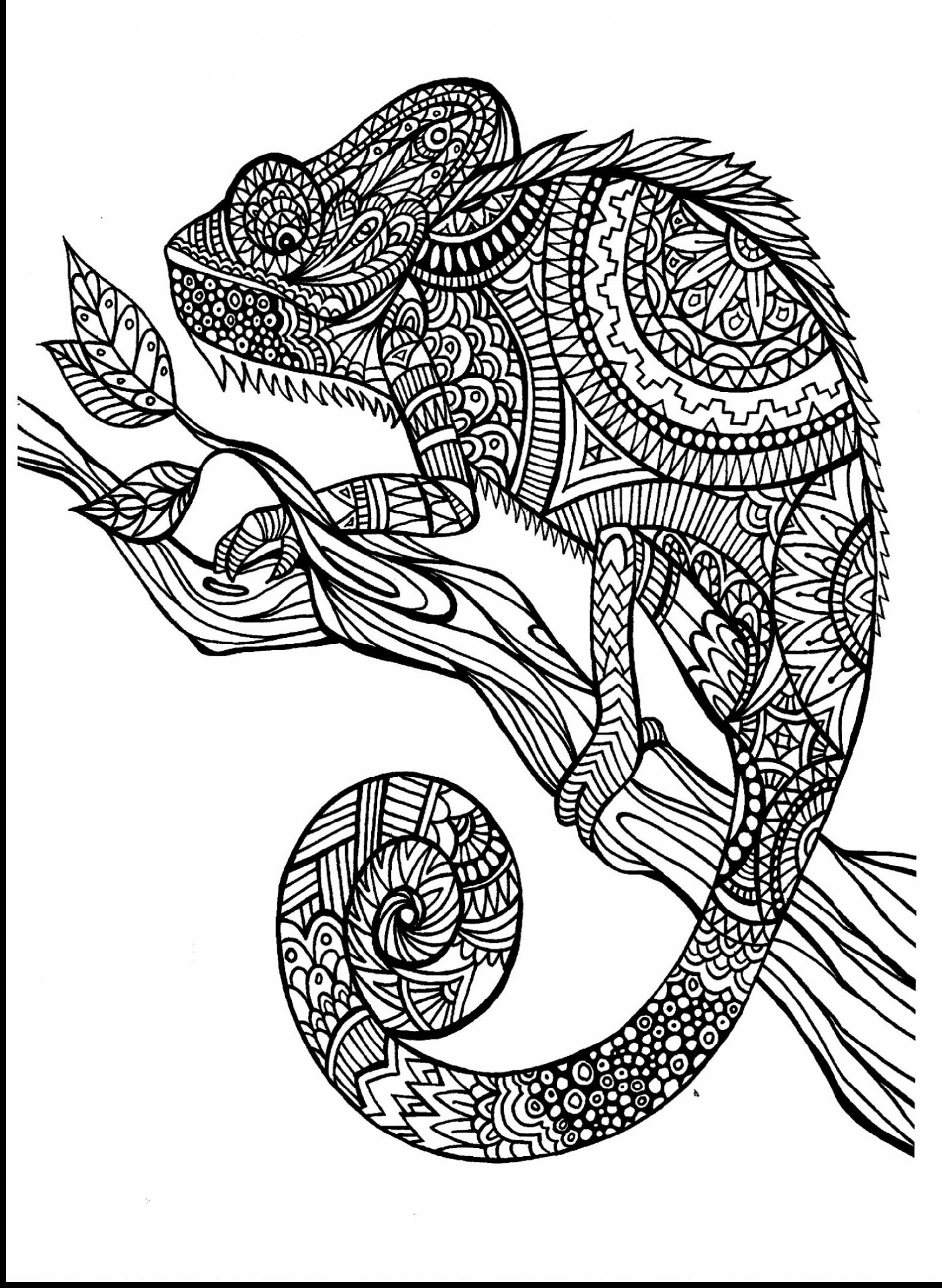 Animal-Coloring-Books-For-Adults-Free.