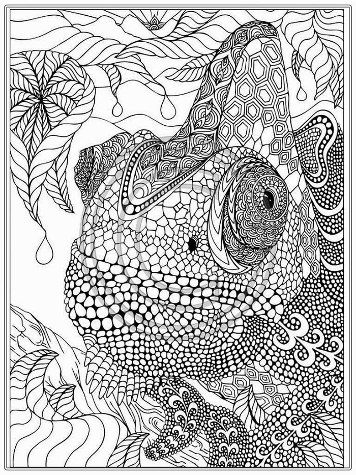 Coloring For Adults Free Animal