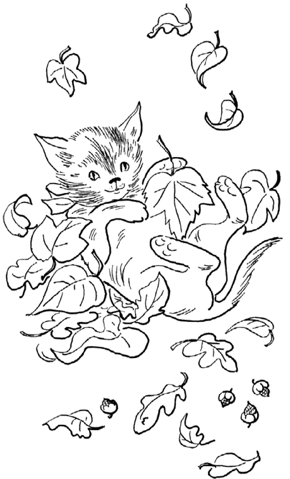 Fall Coloring Sheets Cat