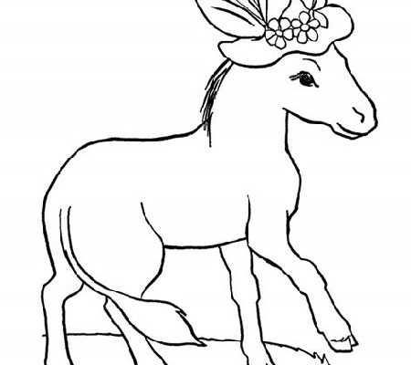 Free Printable Coloring Pages For Kids Animal