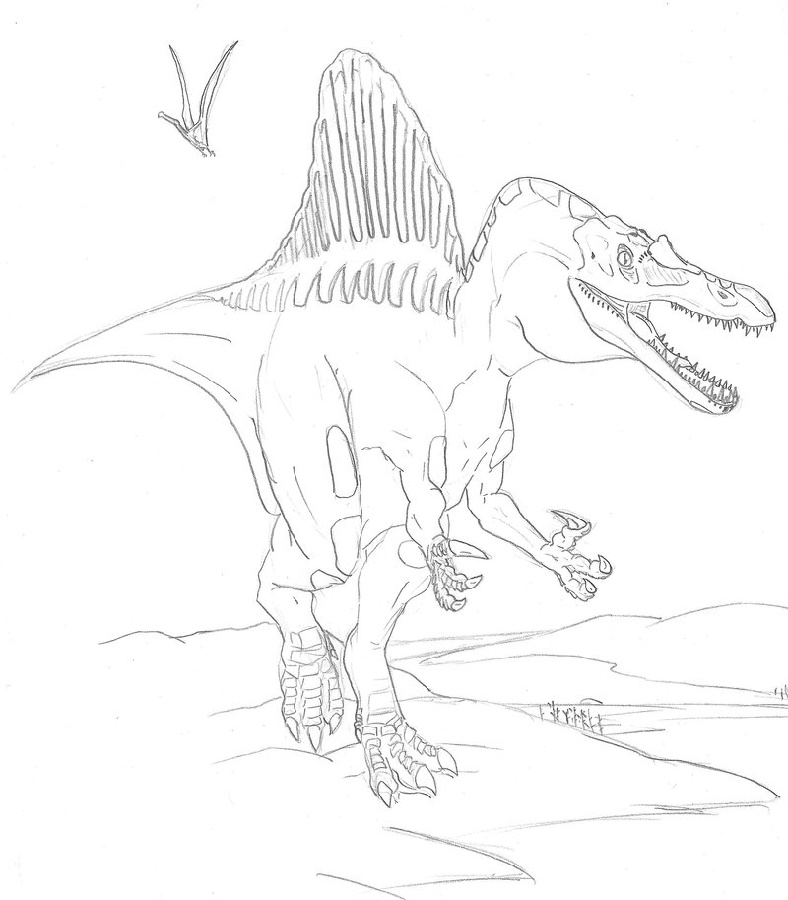 Spinosaurus Coloring Page Dinosaur
