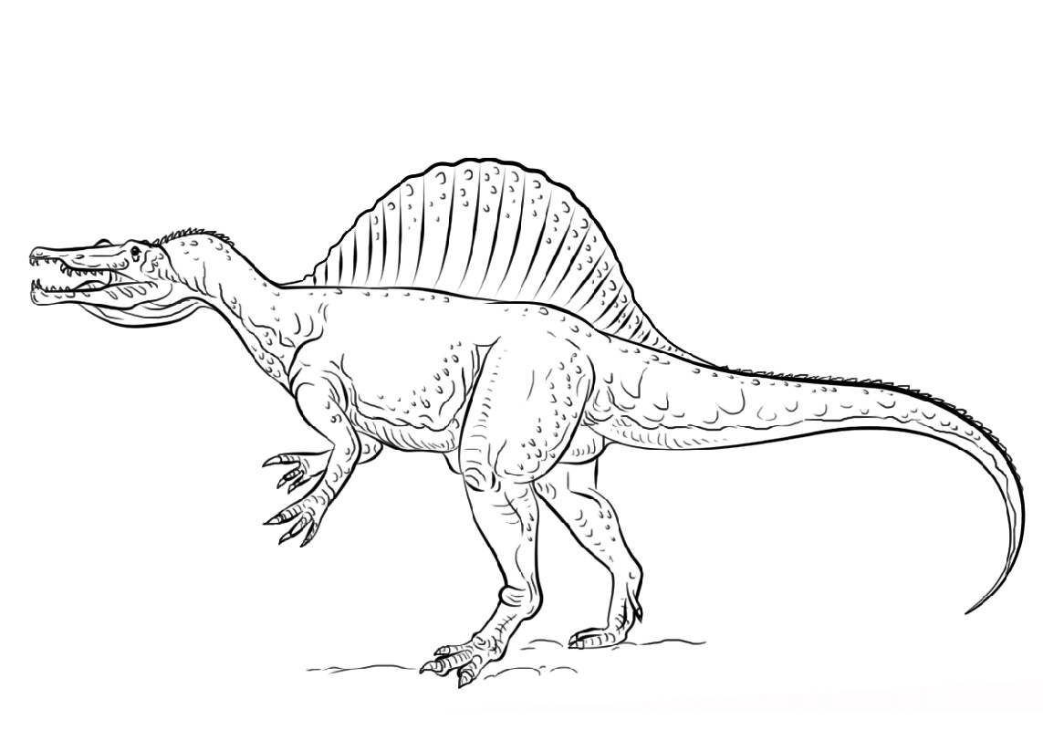 Spinosaurus Coloring Page Free