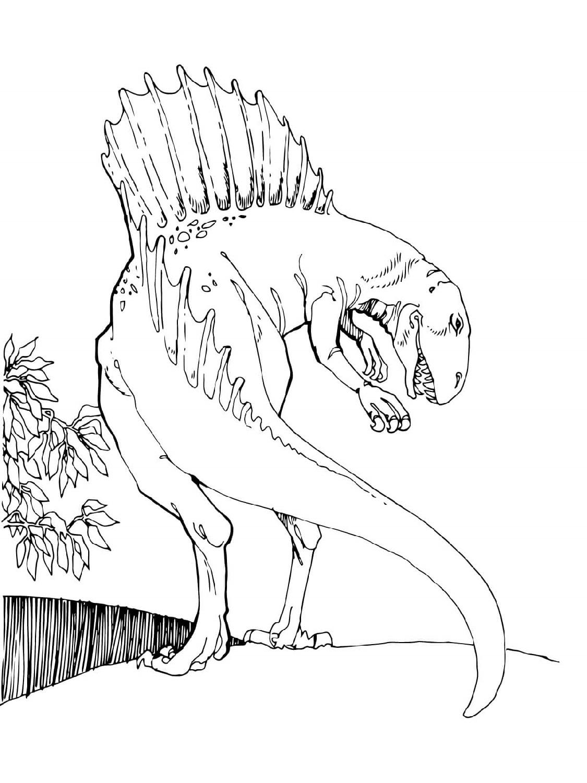 Spinosaurus Coloring Page Theropod Dinosaur