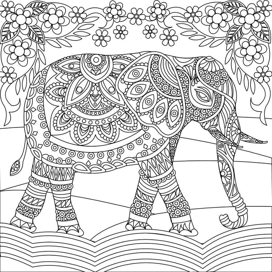 Adult Coloring Pages Elephant Printable