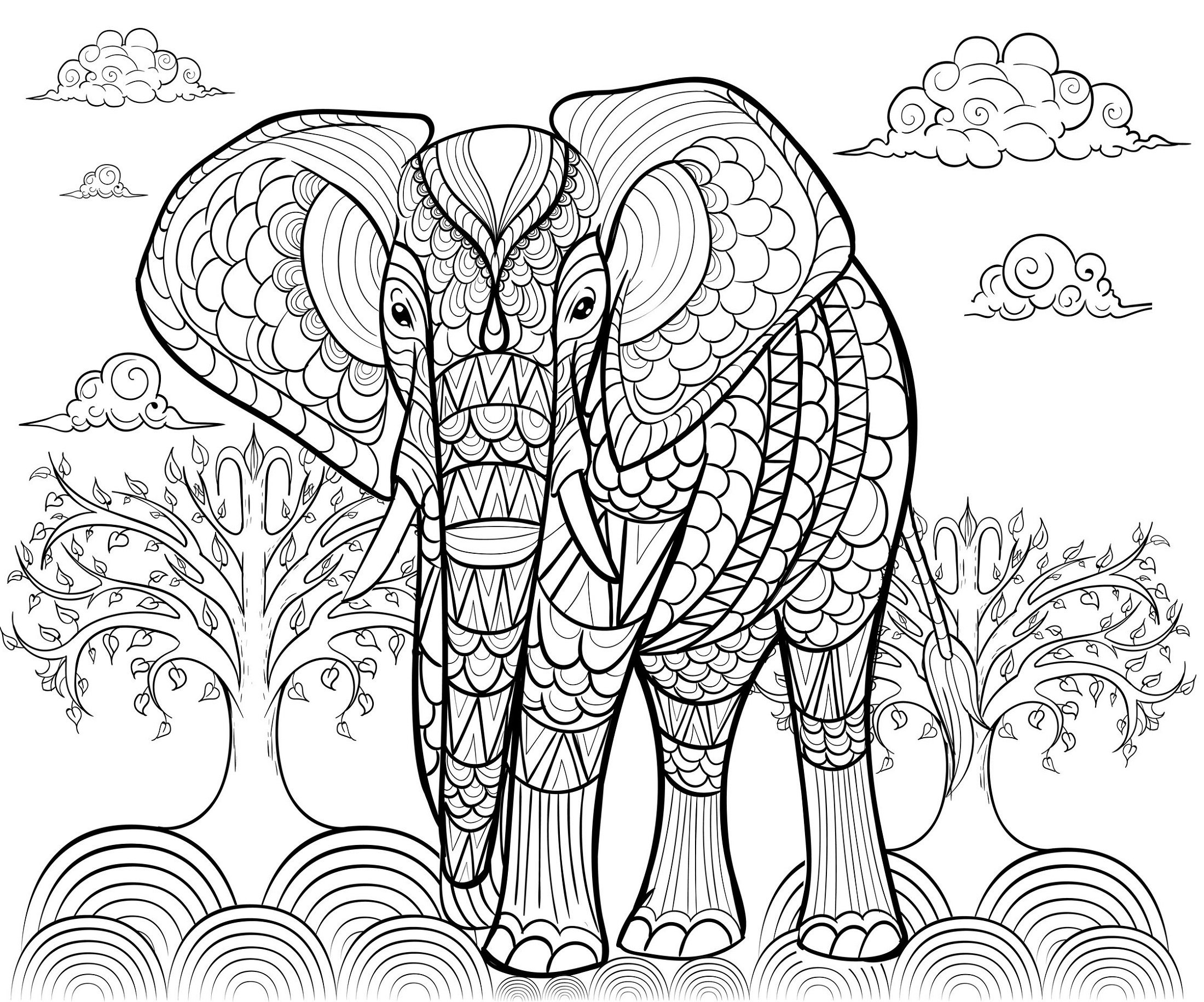 Adult Coloring Pages Elephant To Print
