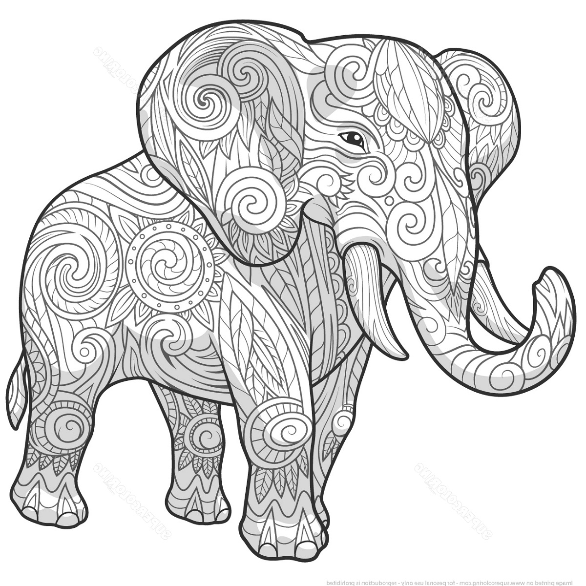 Adult Coloring Pages Elephant Zentangle