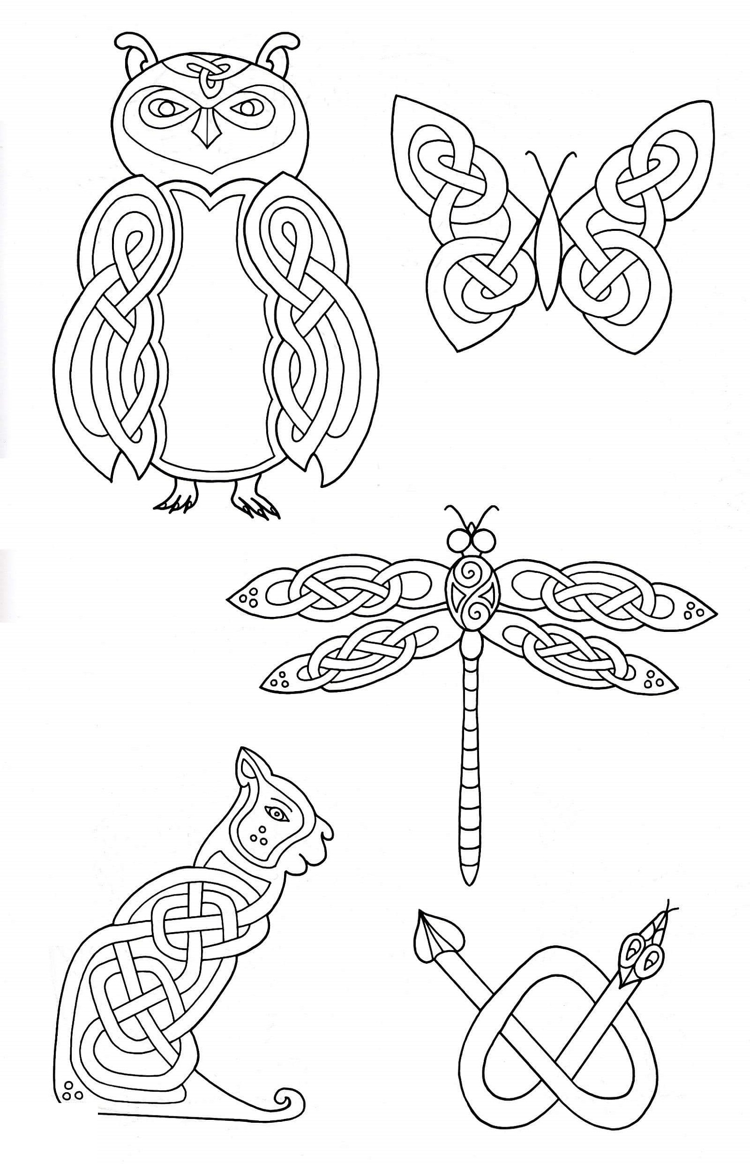 Design Coloring Pages Animal