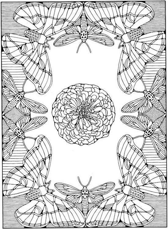 Free Printable Coloring Pages For Adults Advanced Butterfly