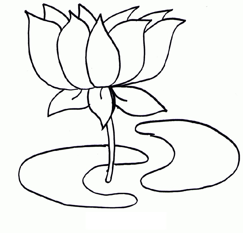 Lotus Flower Coloring Page For Kids