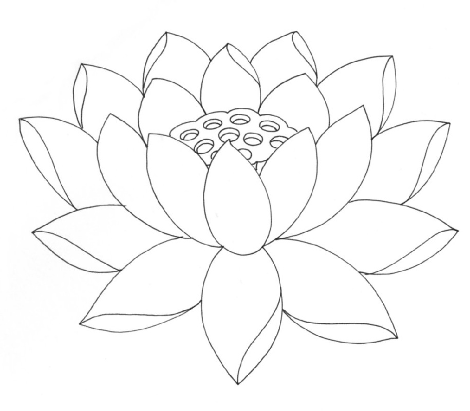 Lotus Flower Coloring Page Free