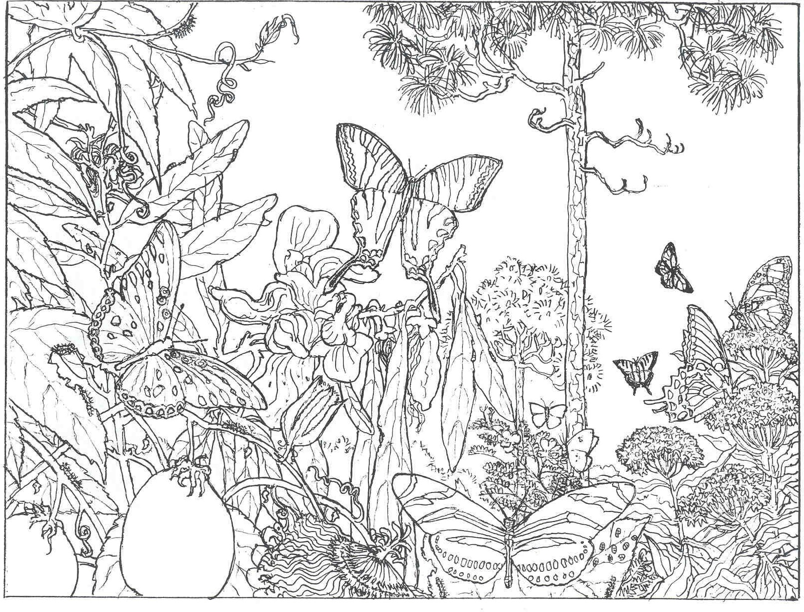 Printable Coloring Pages for Adults Nature