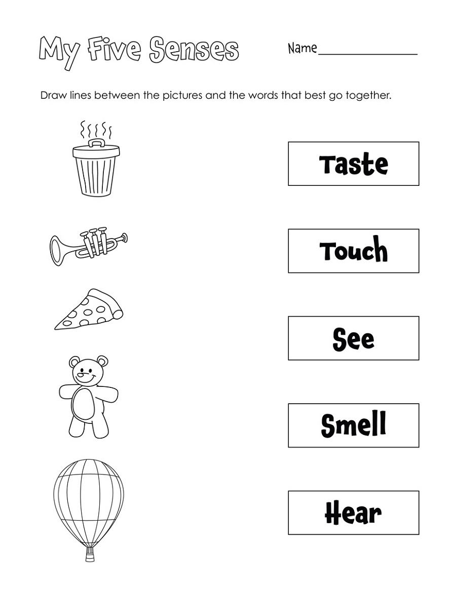 Printable Learning Pages For Toddlers Sense
