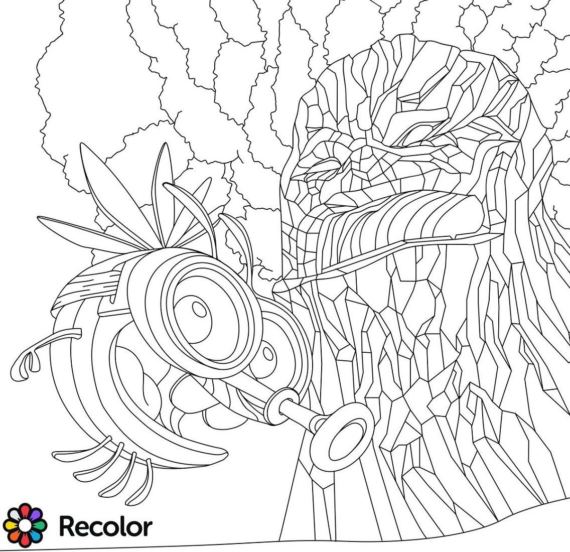 Recolor Coloring Book Free