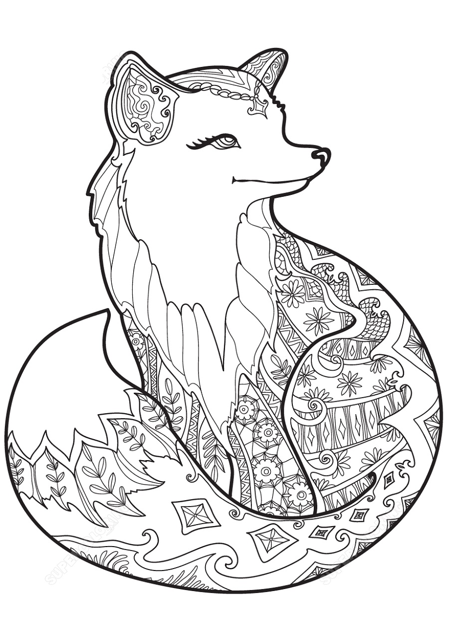 Swift Fox Coloring Pages
