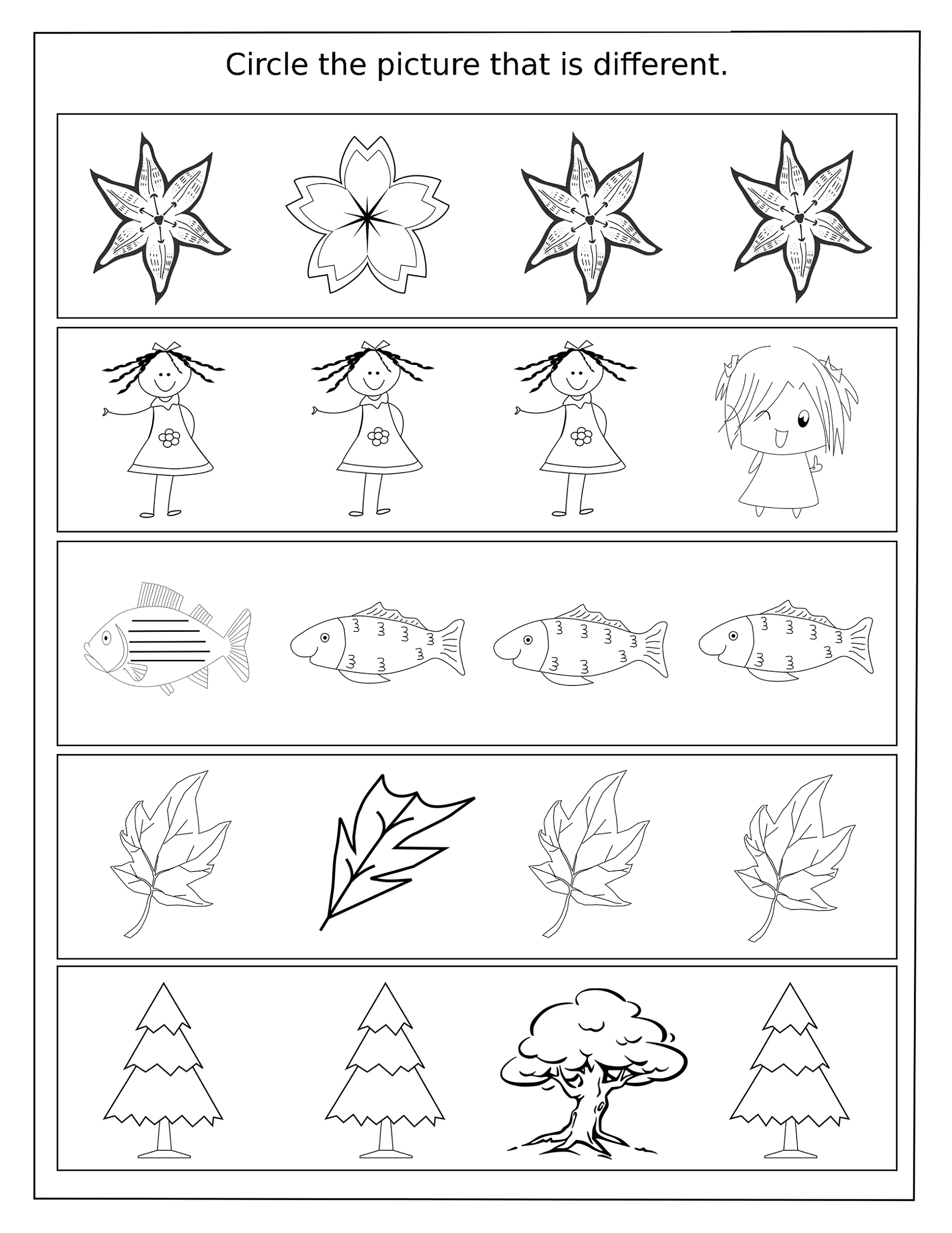Activity Worksheets For Kids Same And Different