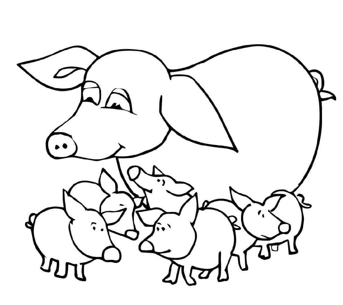 Baby Animal Coloring Pages Pig