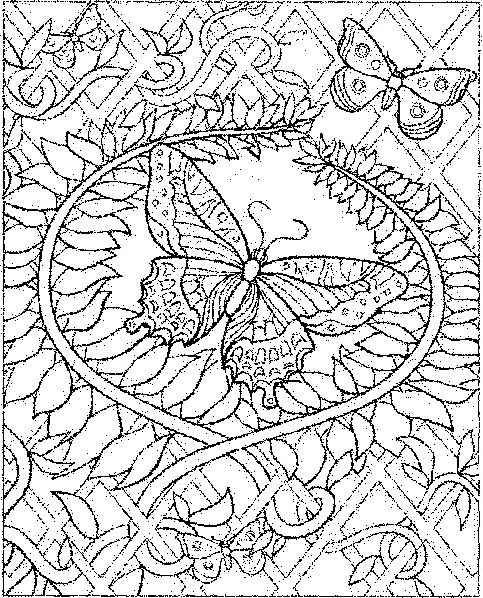 Coloring Pages For Seniors Butterfly