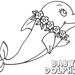 Dolphin Coloring Pages Baby