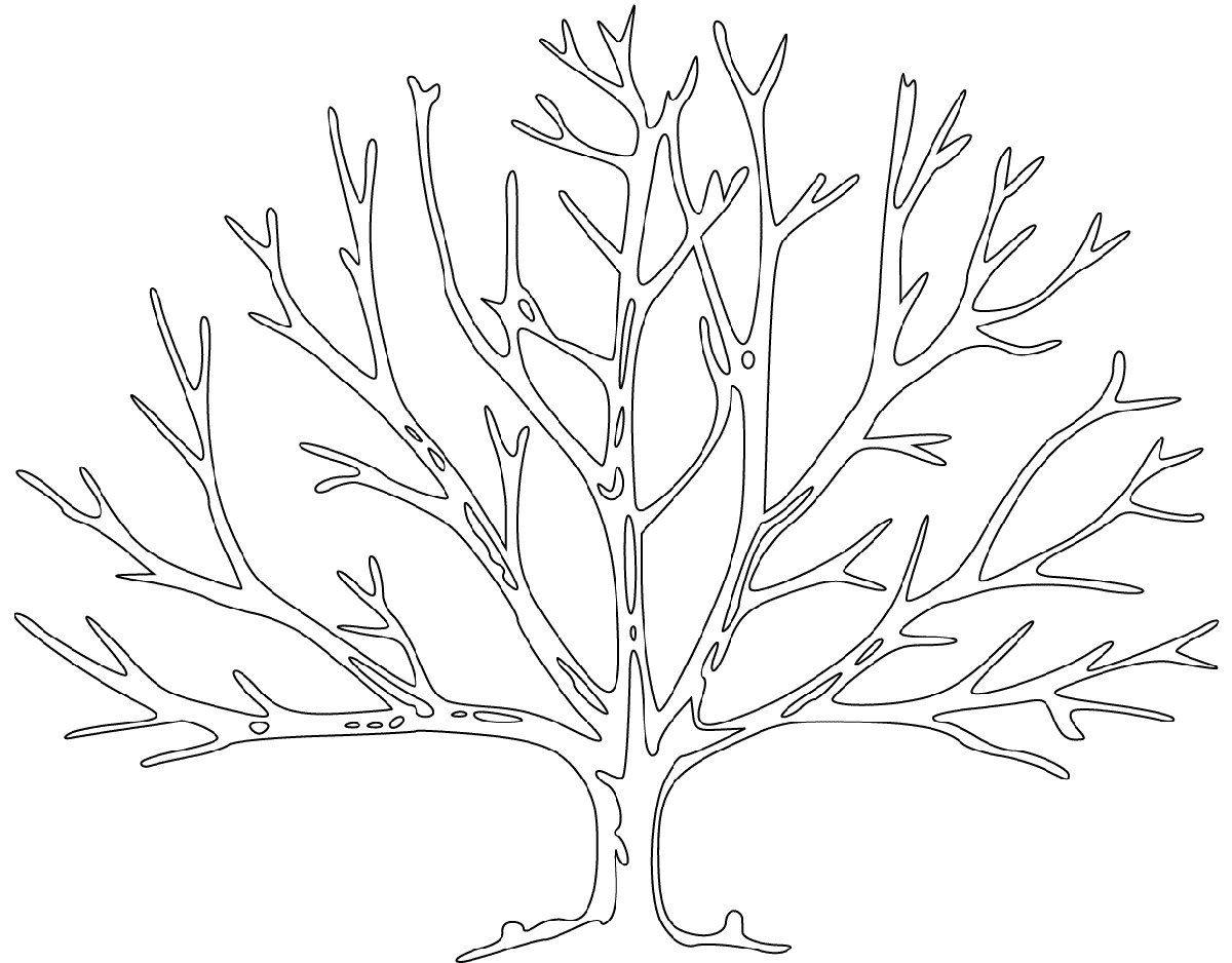 Bare Tree Coloring Page Printable