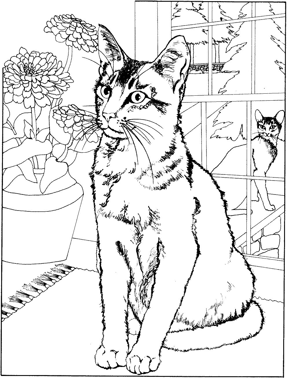 Cat Coloring Book Free