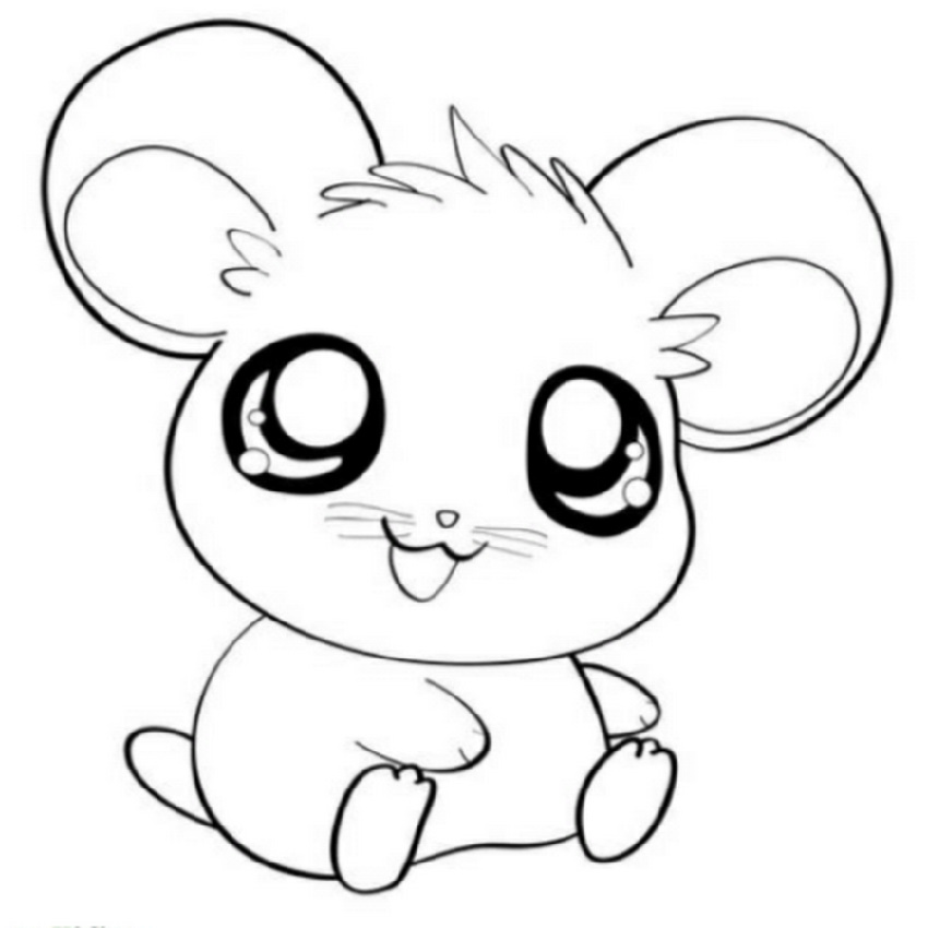 Cute Animal Coloring Pages Hamster