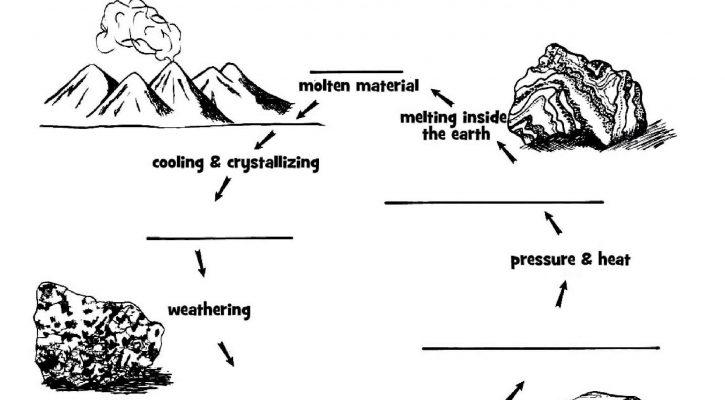 Educational Printables Science