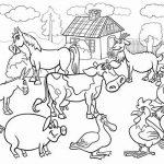 Farm Animal Coloring Book