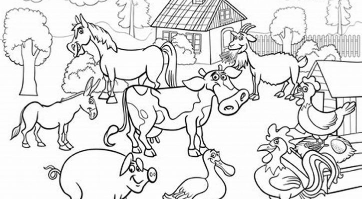 Farm Animal Coloring Book