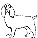 Beagle Coloring Pages Pictures