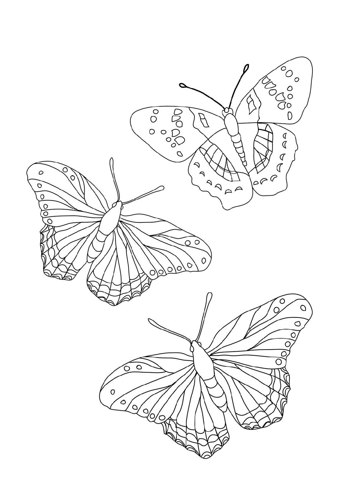 Butterfly Coloring To Print