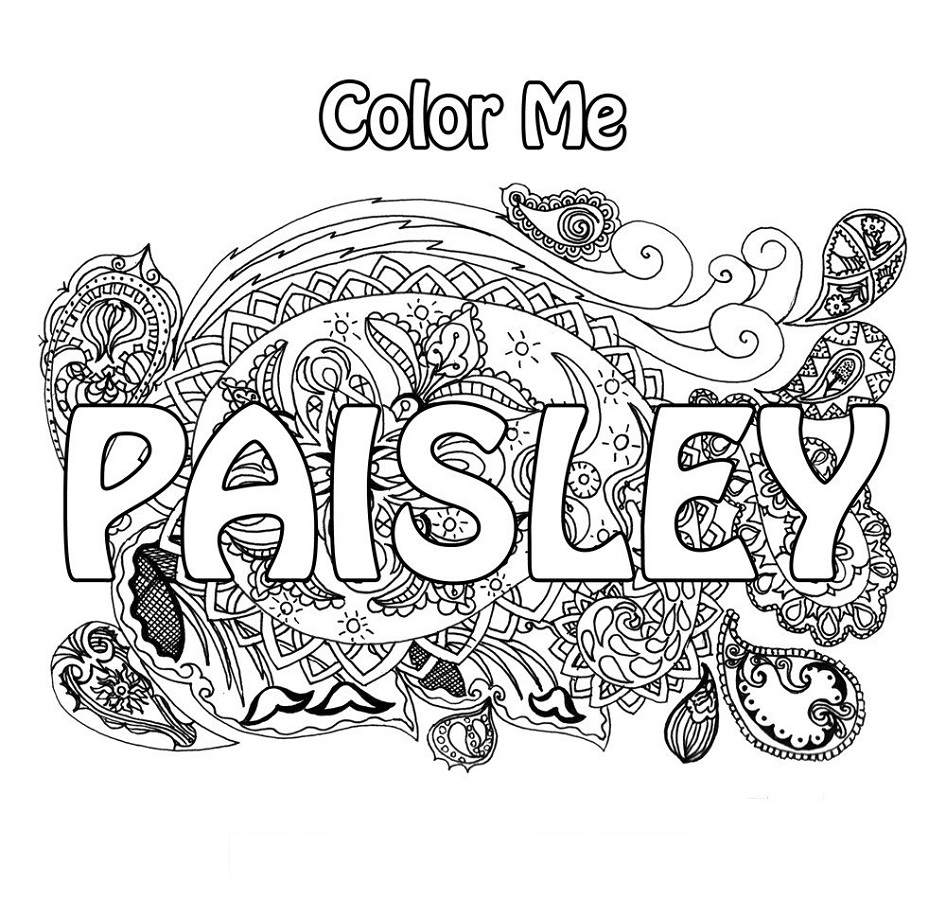 Color Me Coloring Book Paisley