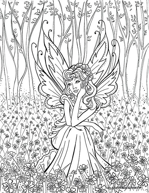Coloring Games For Adults Fairy