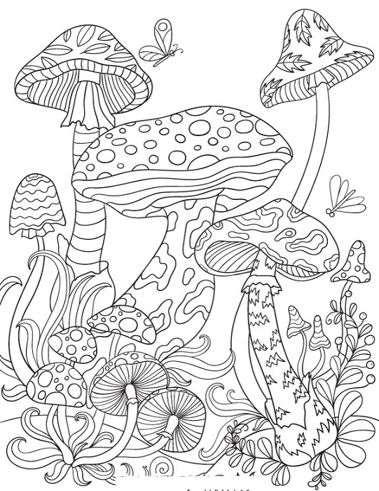 Coloring Pages For Adults Pdf Mushrooms