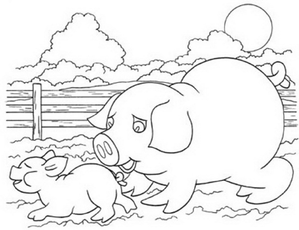 Farm Animal Coloring Pages Pig