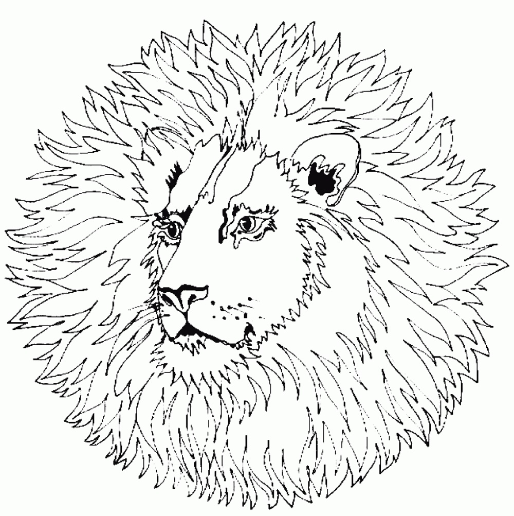 Free Mandala Coloring Pages Animal