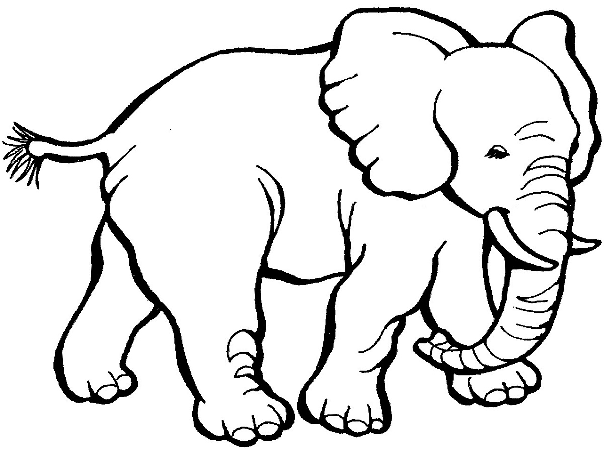 Coloring Pictures Of Animals Elephant