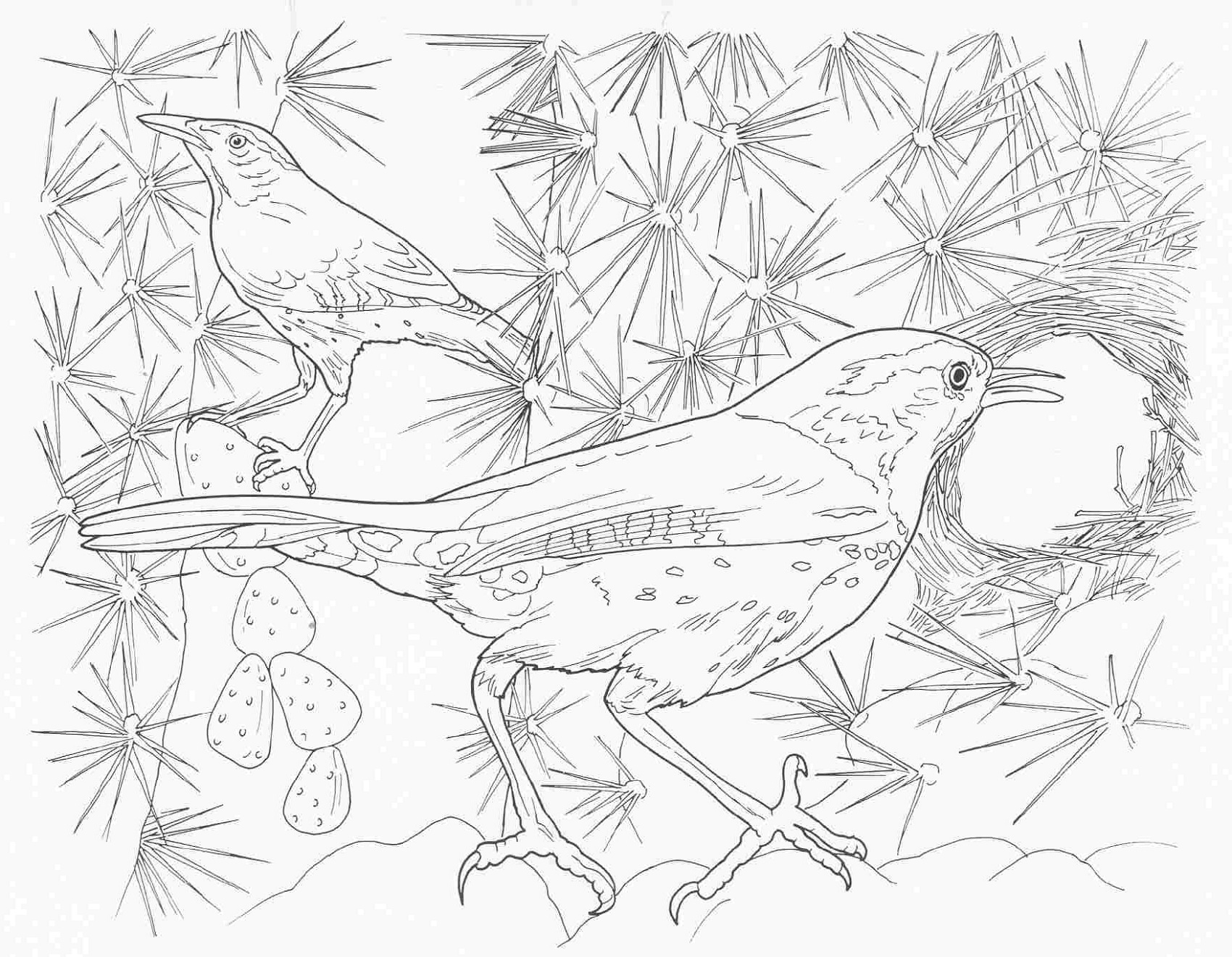 Complex Coloring Pages Animal