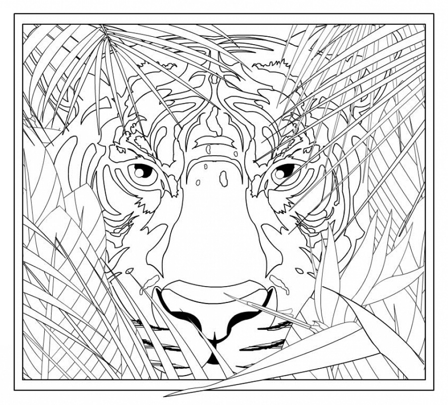 Complex Coloring Pages For Grown Ups
