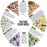 Food Coloring Chart Wheel