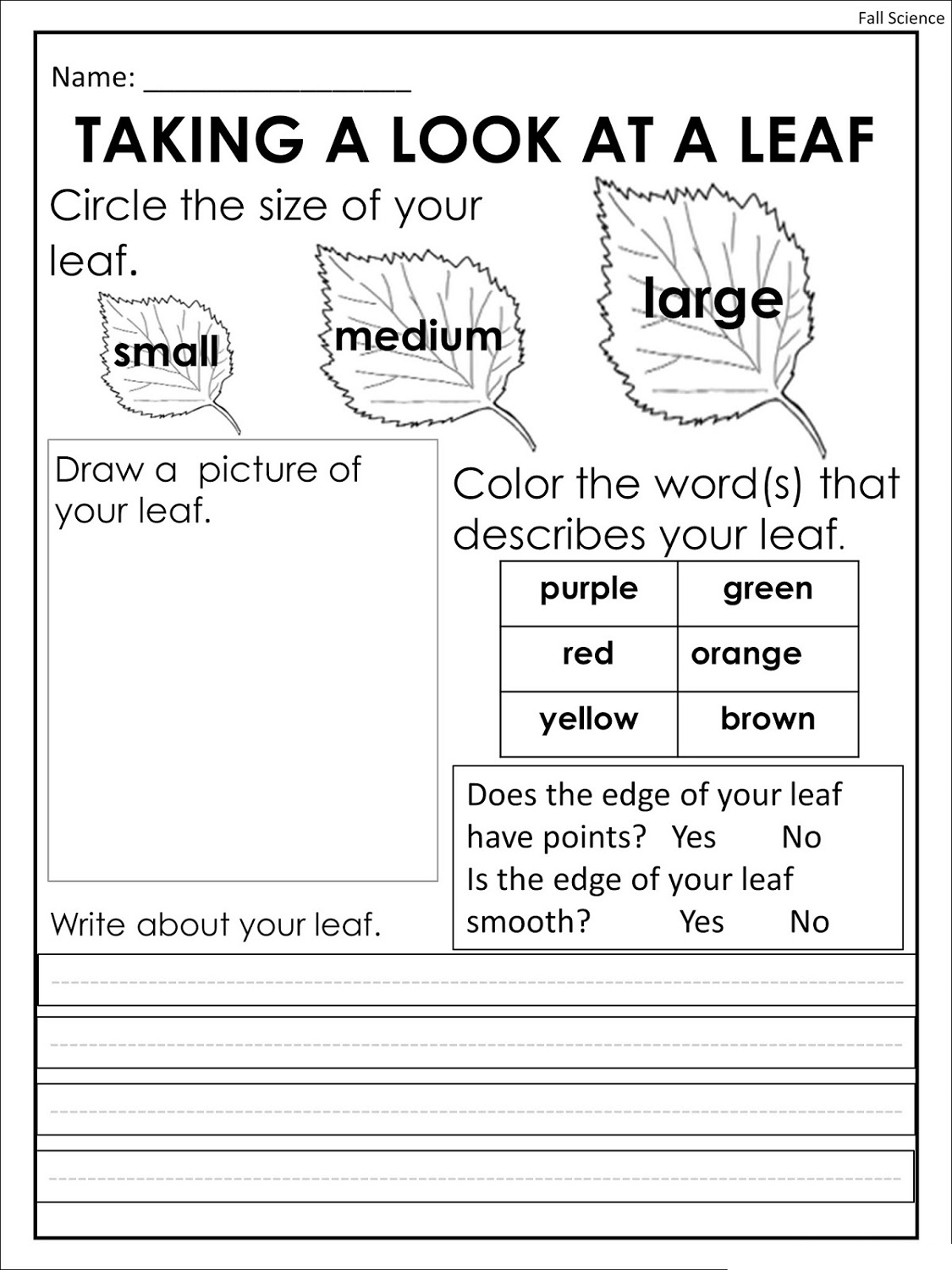 Free Printing Worksheets Science
