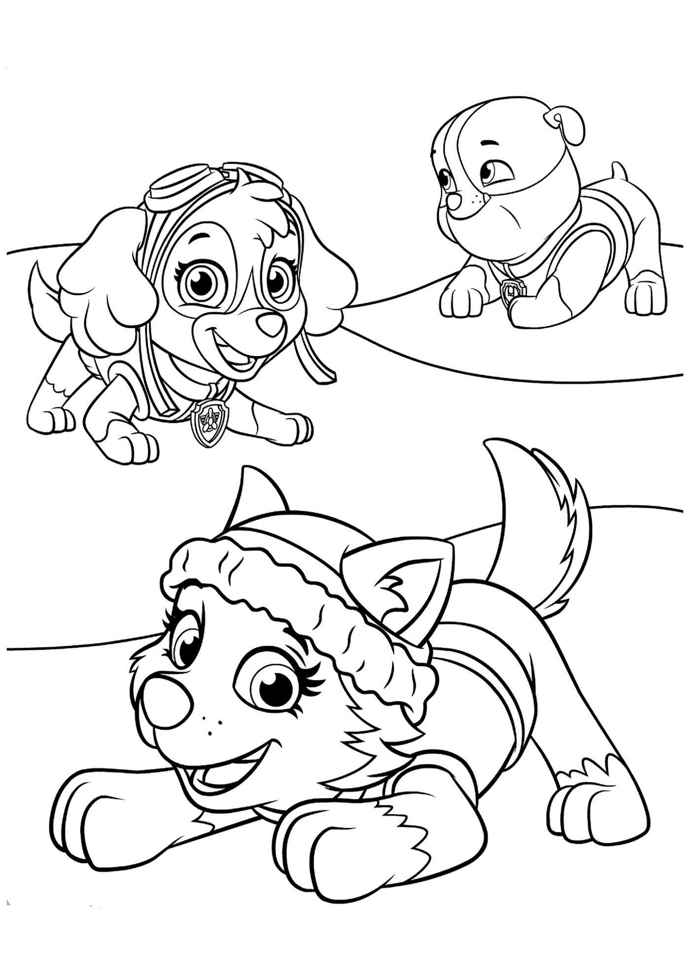 Paw Patrol Coloring Cartoon