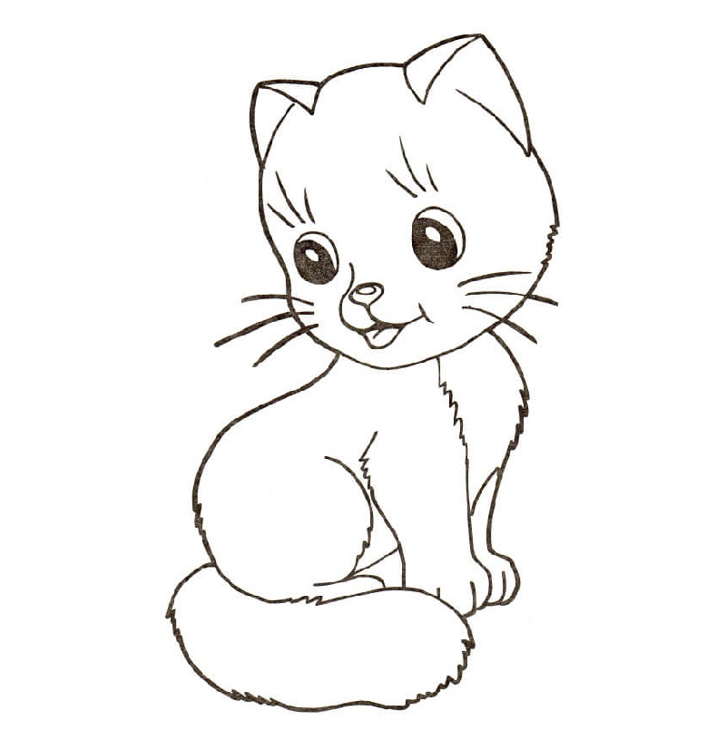 Printable Kitten Coloring Pages Little