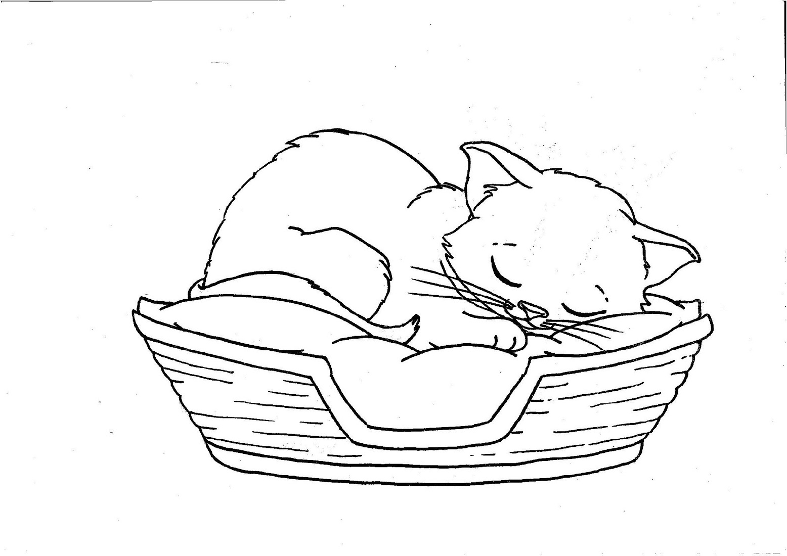 Printable Kitten Coloring Pages To Print