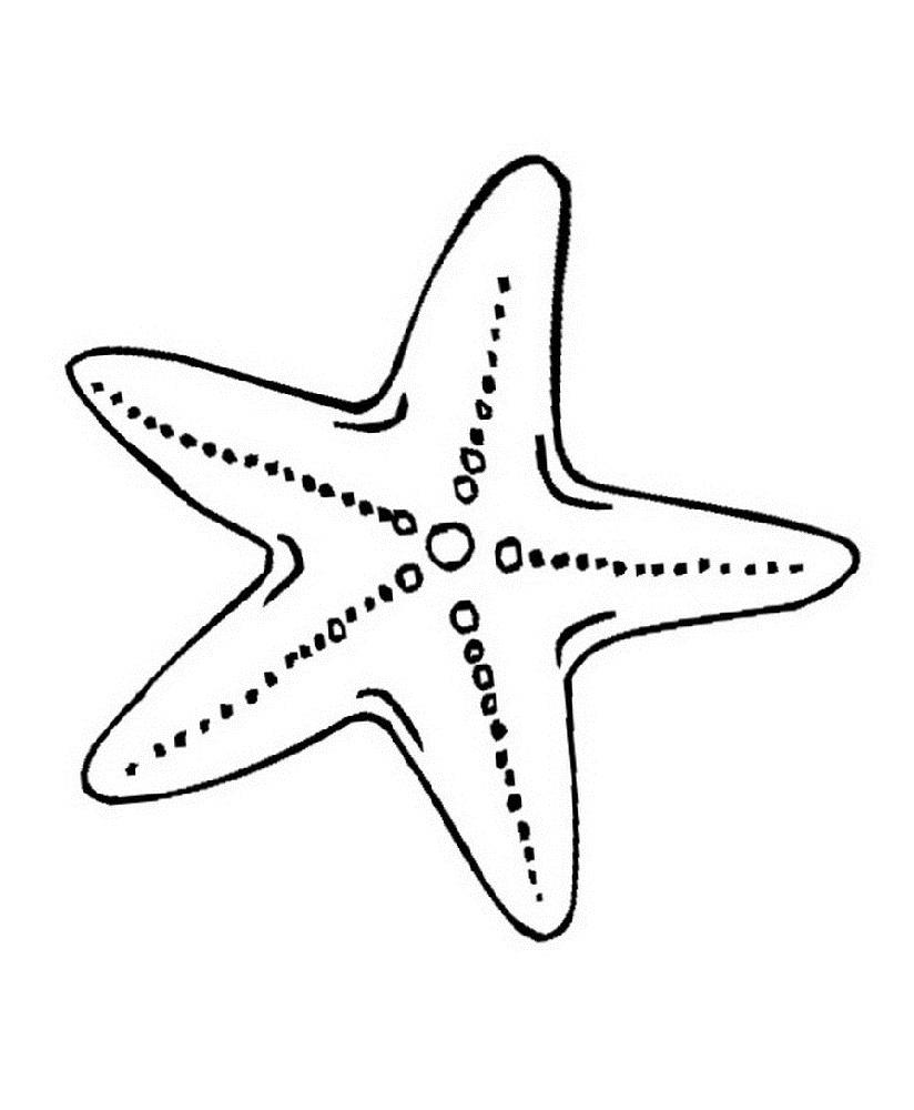 Sea Star Coloring