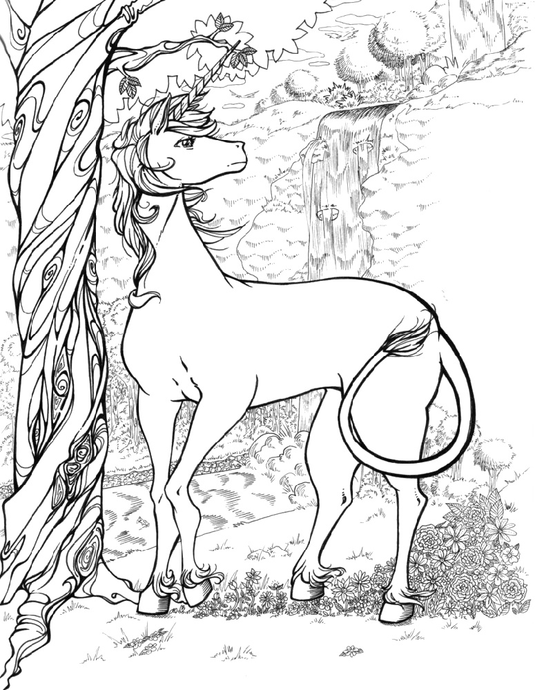 Unicorn Coloring Book Pictures