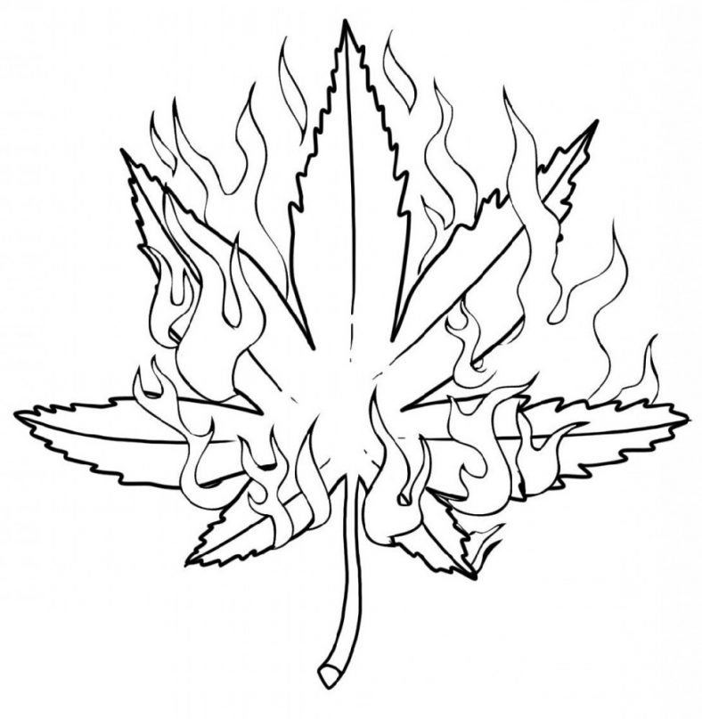 Weed Coloring Pages Printable